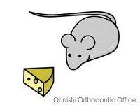 ネズミと15H標識されたチーズ